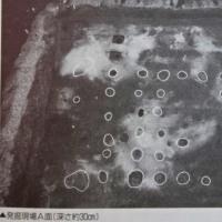 水原代官所 建物研究 4