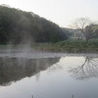 ローズマリー、 県立三木山森林公園