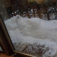 大雪!!!