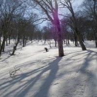 残雪鍋倉山