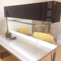 介護施設の新規水槽設置準備