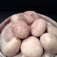 鹿児島産・新ジャガイモ