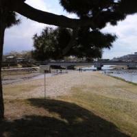 京都、鴨川デルタに来た。