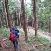 2017.6.22:広島県山岳連盟から紹介のあった「牛小屋高原駐車場~恐羅漢山~天杉山周回山道」