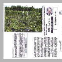 大社正照さん。日本農業新聞で最高賞