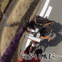 【中部200】レアキャラ get!【BRM312】