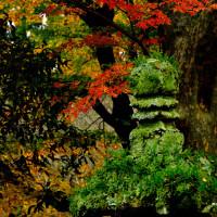 紅葉の英彦山へ