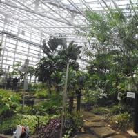 神代植物公園 その2