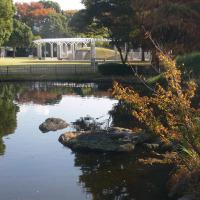 中央公園~秋の風景