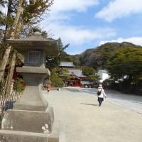 鎌倉の春を目と口で味わう!