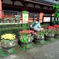 3604・浅草寺