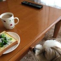 パンとラッキー