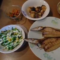 なんこつのから揚げ&砂肝の塩コショウ炒めの晩御飯
