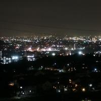 夜景とパクチーおにぎり