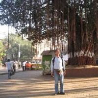 「悠久のインド9日間」№10 海の玄関インド門