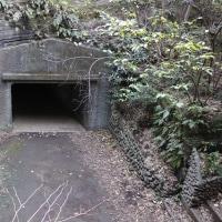 東京湾要塞 大房岬要塞 再訪2(6