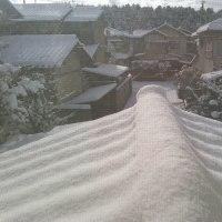 今日の京都。