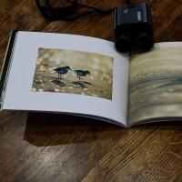 Bird Coall 中村利和さんの写真集と写真展