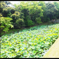 岡山1泊旅行