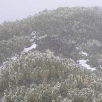 仙丈ヶ岳のセカンドインパクト