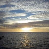 2016年小笠原村硫黄島慰霊墓参(368)小笠原丸で硫黄島を周回(79)献花の菊と雲と夕日