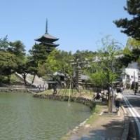 また奈良に行ってきました