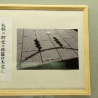 朝日新聞社・上野の牡丹