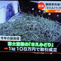 4/25 お茶の値段 1kg 108万円