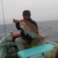 ホーリー釣行記(334)