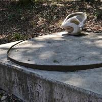山梨 「大窪いやしの杜公園」 藤垈の滝と水芭蕉を訪ねる
