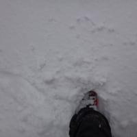 12月10日(土)の志賀高原は冷え冷え終日雪!だけど,そんなに積もらなかったよ(涙)