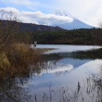 紅葉と富士山と逆さ富士~西湖②
