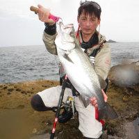 ヒラスズキ 上五島 2016 梅雨 6月