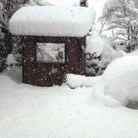 雪 3日目