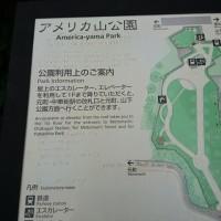 ピンクアナベルとアメリカ山の巻