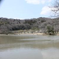 今日(3/28火)、菅塩沼に行ってきた。