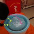 こんぶの尿漏れの状況&水の飲み方