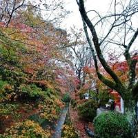 旧東海道ランニング、番外編(まとめ)