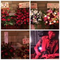 ����ãϺ Maniac Tour ��PERFORMANCE 2014��