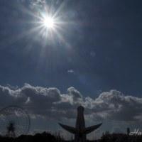 太陽の塔も日向ぼっこ^^