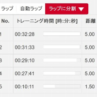 今日は20km走。前のトレーニングとの比較検討
