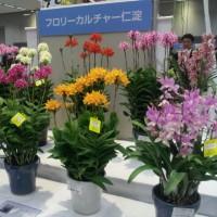 四国の花トレードフェアその2