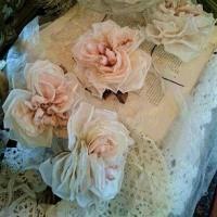 薔薇 ロゼット咲き