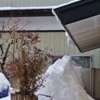 灯油タンクに給油するための雪寄せが今日の仕事です