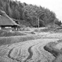 茅葺民家  兵庫県旧南丹町の民家