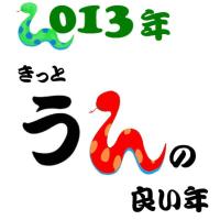 歳が明ける…2013