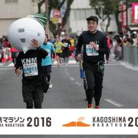 鹿児島マラソン2016走行記(その6:最終回)