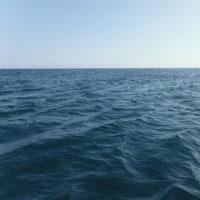 10月26日 海の調子は、イマイチかな
