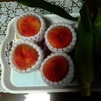 桃とトウモロコシ