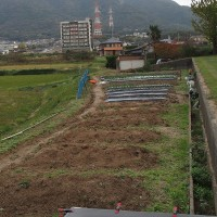 施肥と耕耘。
